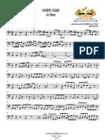 Concerto Grosso - 2014 - Contrabass