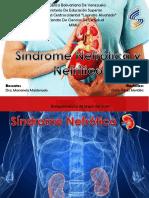 Sindrome Nefrotico y Nefritico Pediatria Mimu