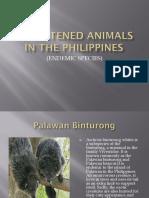 Threatened Animals