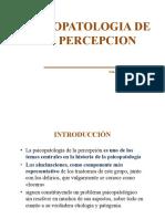 Psicopatologia de La Persepcion