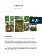 the wildflower project lab report