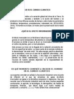 AFECTACIONES AL AMBIENTE.docx