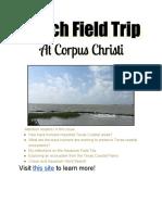 beach field trip newsletter