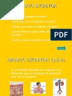 APARATO EXCRETOR (3).pps