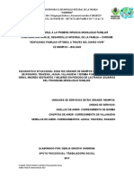 DIAGNOSTICO DERLIS.doc