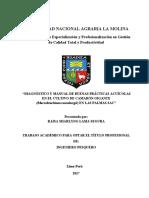 BPM CAMARON TESIS UNALM.pdf