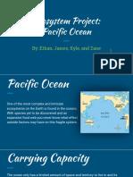 ecosystem project presentation