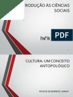 Cultura, Um Conceito Antropológico