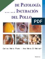 Patologia Incubacion