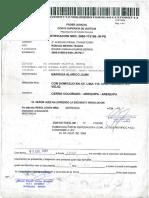 Sentencia por Violencia Familiar- Luis Enrique Delgado Barriga