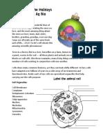 cell model ornament pdf