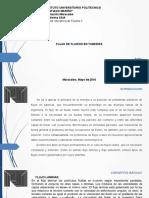 fluidosiirobingomez9799075-160514001722.pdf