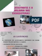 As Catástrofes e o Equilibrio Dos Escossistemas [Acho BOM]