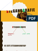 steganografie