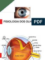 Fisio Olho Convertidoyu