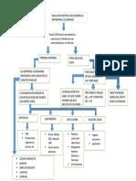 Mapa Conceptual Evolucion Desarrollo Empresarial