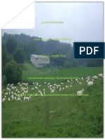 Monografía (Deforestación)