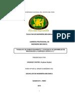 Informe de Practicas Pre Profesionales Vasquez Castro Frydman Seyfert