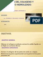 DIAPOS. OBT. DEL COLAGENO.pptx