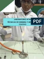 Lab.04 Paz Villanueva