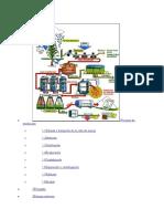 Procesos de producción.docx