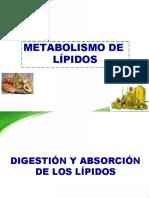 Metabolismo de Los Lipidos (1)-Converted (1)