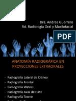 ANATOMIA RADIOGRAFIAS EXTRAORALES, editado (3)-converted.pdf