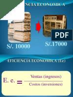 eficiencia economica.pdf
