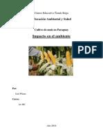 Impacto ambiental del cultivo de maiz.pdf