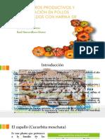 Pigmentación en Pollos Expo Alimentacion
