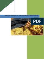Utilização de Silagem de Milho Reidratado Na Alimentação Dos Bovinos