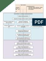pathohysiology