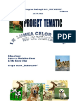 Proiect Tematic Grupa Mare d