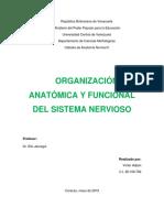 Organización Anatómica y Funcional Del Sistema Nervioso
