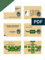 _curso Documentacion Iso 10013 Pl