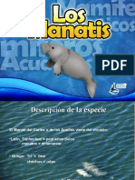 manati-presentacin-160709150507