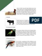 20 Animales Extintos