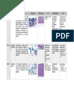 Cuadro de Nic PDF