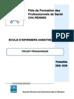 Projet-pedagogique-Ecole-IADE-promotion-16-18.pdf
