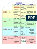 biomolÉculas_cuadro_comparativo.pdf