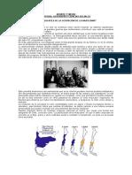 Apunte Antecedentes de La Ocupacion de La Araucania 89389 20171020 20170724 005659