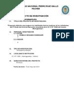 PROYECTO DE INVESTIGACION - ROMULO.docx