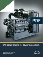 D2842 V12 Diesel Generator