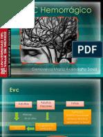 evchemorrgico-131022183640-phpapp01