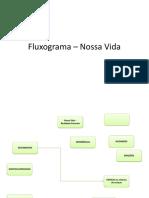 Fluxogr – Noss Vi