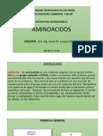AMINOACIDOS  2018