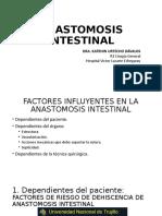 Anastomosis Intestinal