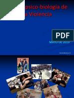 Neuropsicobiologia de La Violencia 2019_a