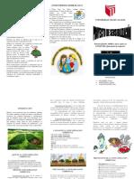 Triptico_ Medio Ambiente y Contaminacion_ambiental