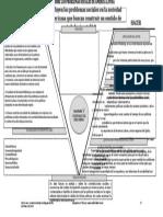 DIAGRAMA-V-De-GOWIN (Diez Falacias Sobre Los Problemas Sociales)